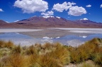 Hedionda lagoon on Santa de Ayes National Park in Bolivia andes