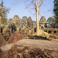 Ta Prohm temple at Angkor Wat complex in Siem Reap